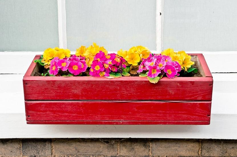 Dřevěný květináč je potřeba pravidelně ošetřovat nátěrem