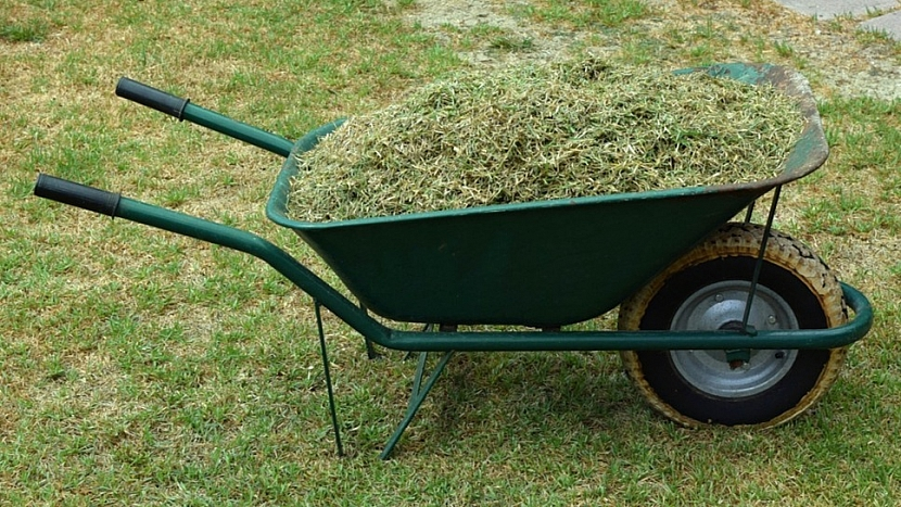 Předpověď počasí a zahrada: posekanou trávu využijte jako mulč