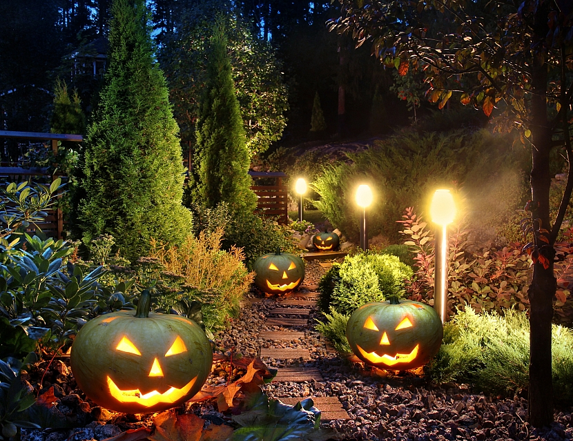 Podzimní osvětlená zahrada