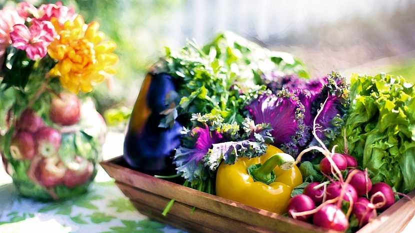 Za bohatou úrodou zeleniny a ovoce i rozkvetlým květinami stojí práce a píle zahradníka i správné hnojení