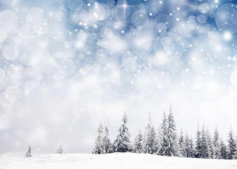 Lednové mrazy napomohou k likvidaci nemocí a škůdců