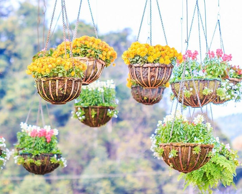 Závěsnými květináči můžete ozdobit balkon i pergolu