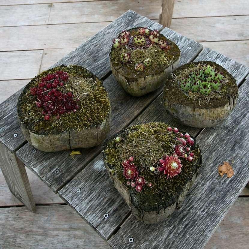 Zahradní stolečky z prken