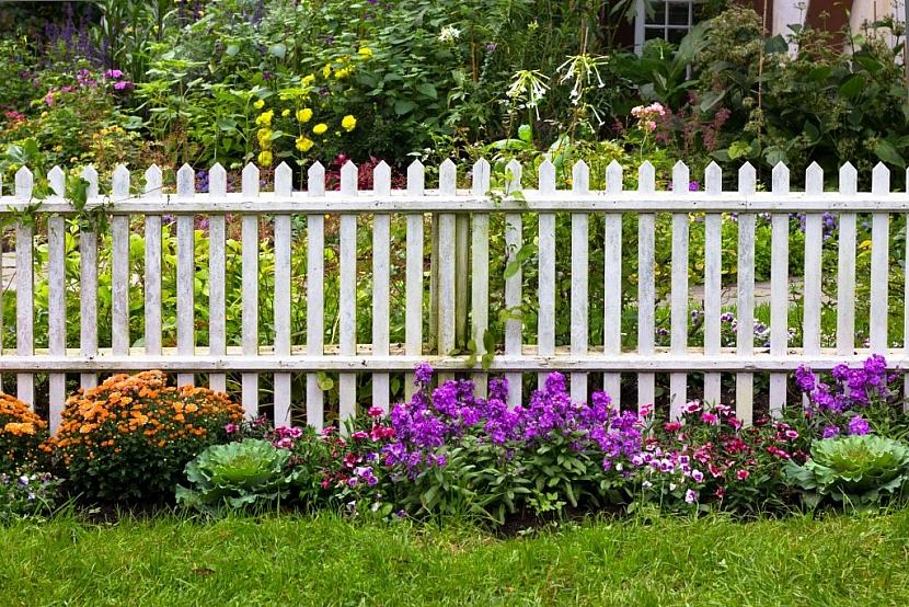 Dřevěný laťkový plot patří k venkovským zahradám