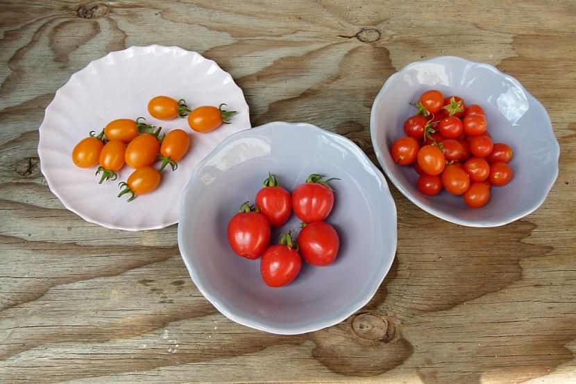 Semínka rajčat z vlastní zahrady: nechte je přezrát