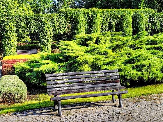 Vhodná kombinace zeleně vytvoří dokonalé soukromí nejen v zahradě (Zdroj: Depositphotos)