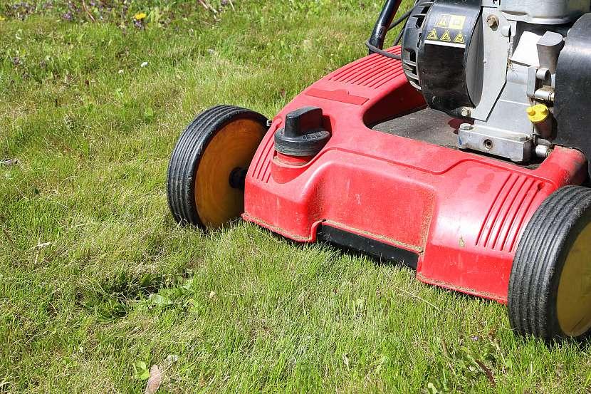 Vertikutaci neboli provzdušnění trávníku je třeba provádět alespoň dvakrát do roka