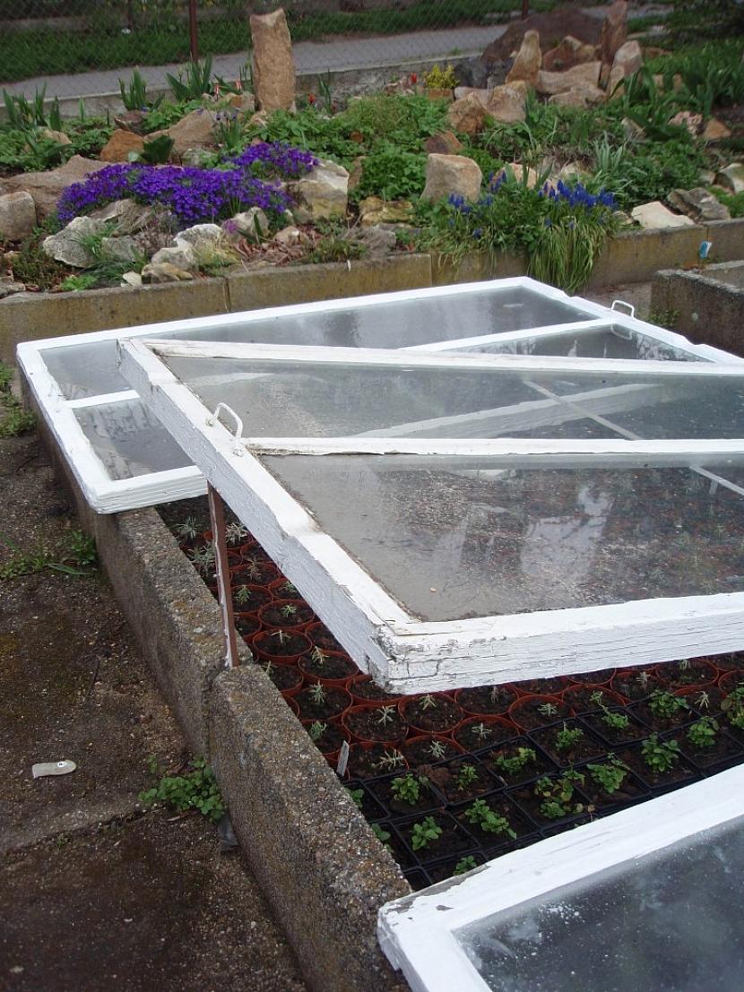Jako kryt pařeniště lze použít stará vyřazená okna
