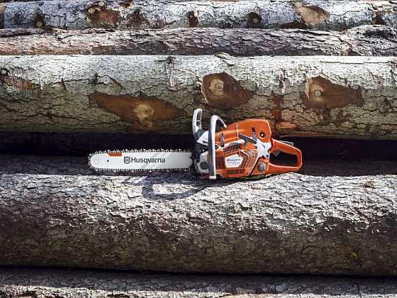 Vánoční strom pro Prahu pokořila zbrusu nová profesionální pila Husqvarna