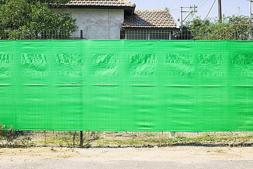 Zelená plachta