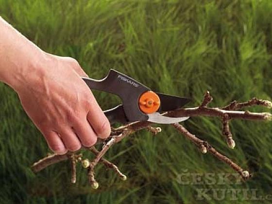 Řez a tvarování dřevin