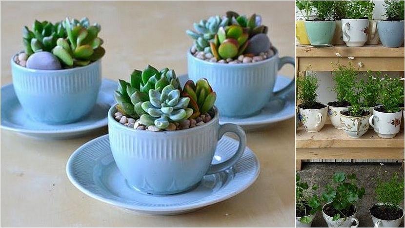 Porcelánové a keramické hrnky