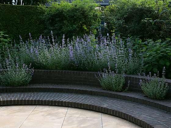 Schody mohou mít i vytvořené otvory pro osázení rostlinami, zde je vysazena šanta, která krásně doplňuje strohou linii schodu (Zdroj: Daniela Dušková)