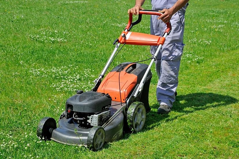 Sekačka na trávu nesmí chybět žádnému zahrádkáři