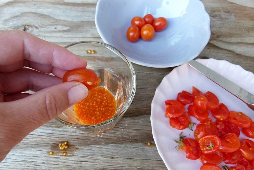 Semínka rajčat z vlastní zahrady: vymáčkněte semena