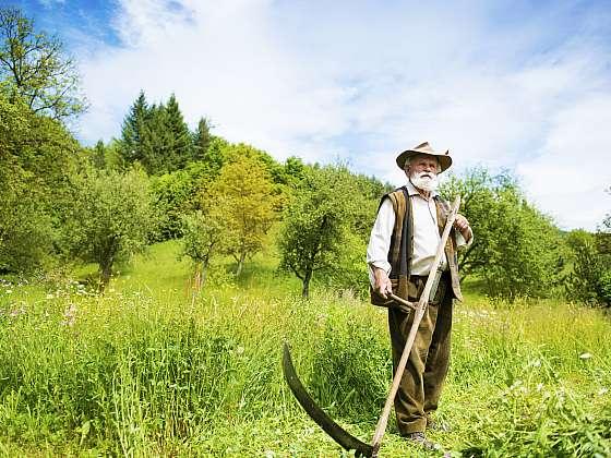 Dnes už trávu kosou sekat nemusíme, vybereme si kvalitní bubnovou sekačku (Zdroj: Depositphotos)