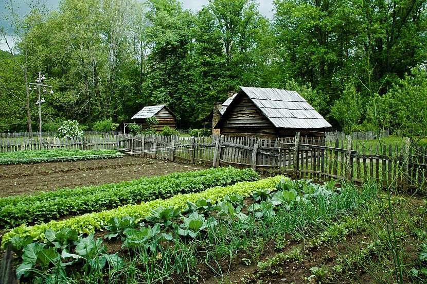 Dřevěný domek u zahrady