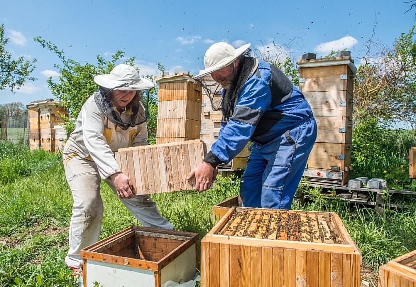 Dva včelaři