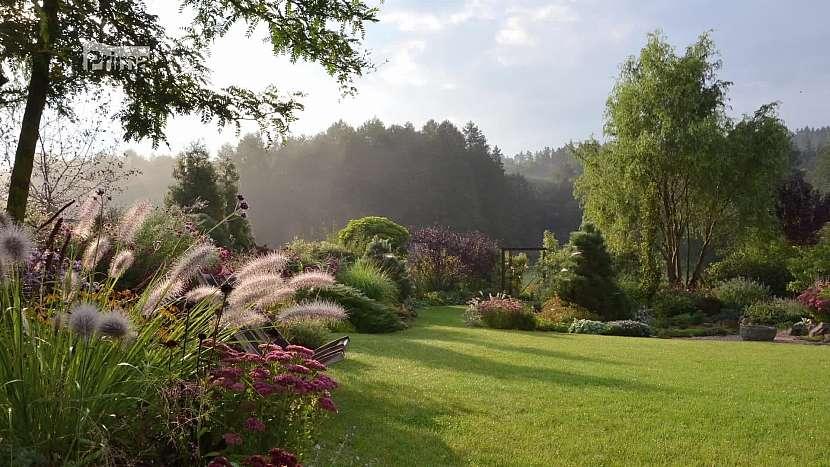 Trávy jsou pro svůj dominantní vzrůst důležitým prvkem každé zahrady