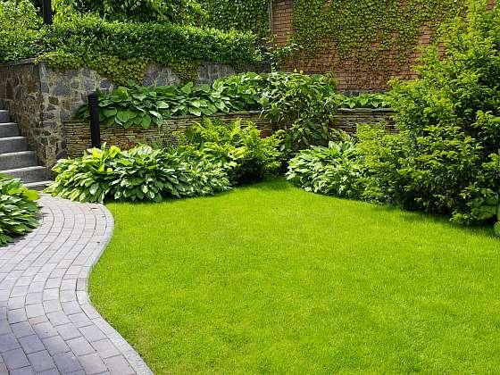 Okrasná zahrada je pastvou pro oči, při jejím osazování myslete i na opylovače (Zdroj: Depositphotos (https://cz.depositphotos.com))