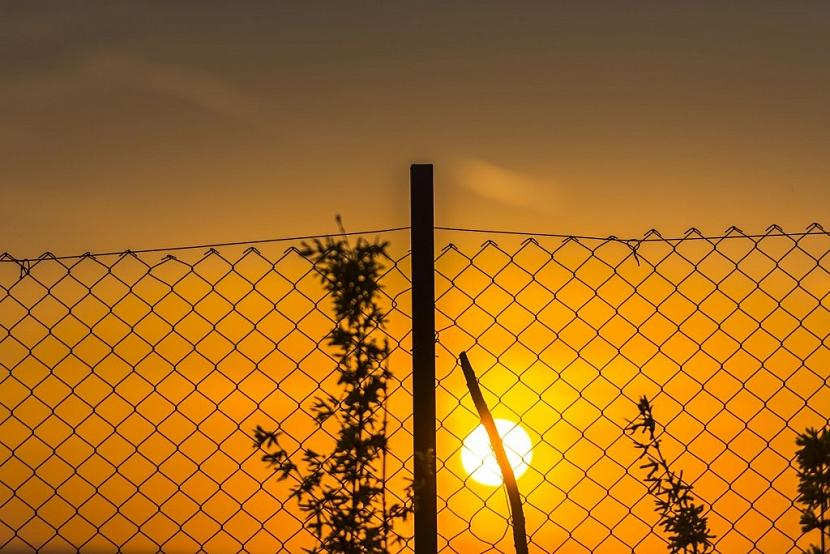 Drátěný plot pomůže tam, kde není moc financí