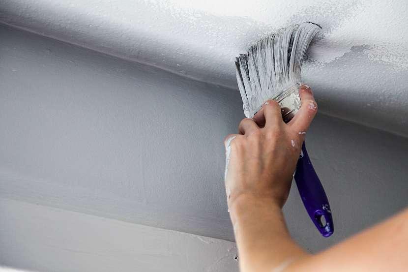 Po likvidaci plísně strop nově vymalujte protiplísňovými barvami