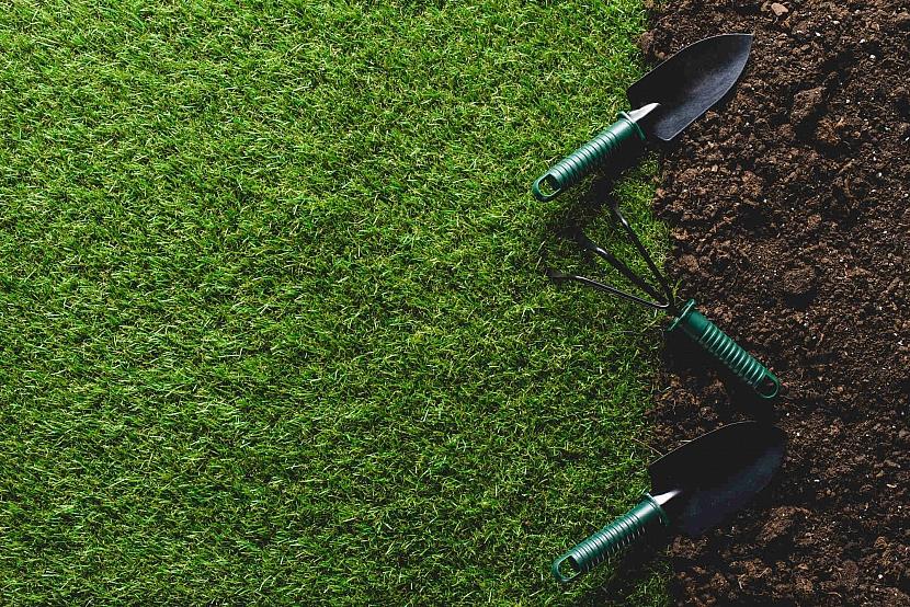 Založení nového trávníku
