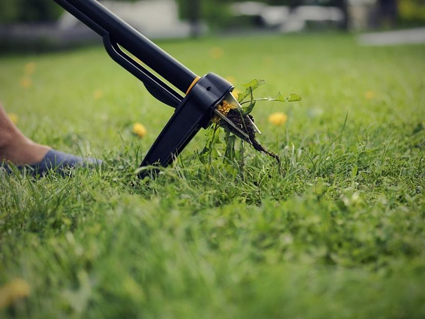 Vytrhávač plevele Fiskars Xact odstraní plevel i s kořeny bez výraznějšího porušení trávníku.