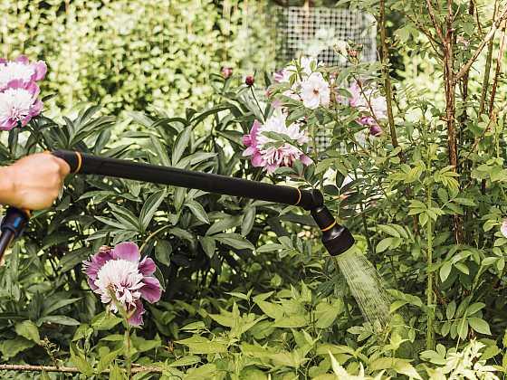 Víte jak pěstovat zeleninu a přitom šetřit vodou? (Zdroj: Fiskars)