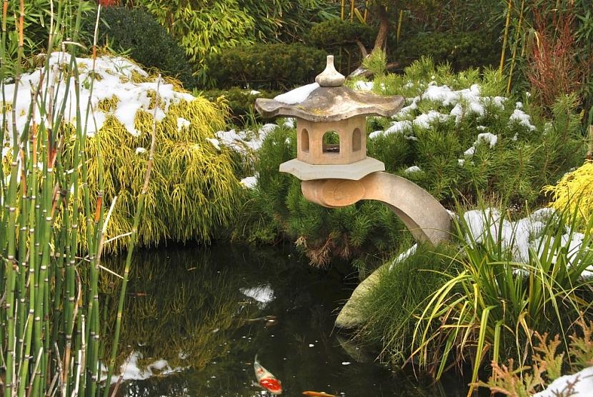 Voda v zahradním jezírku