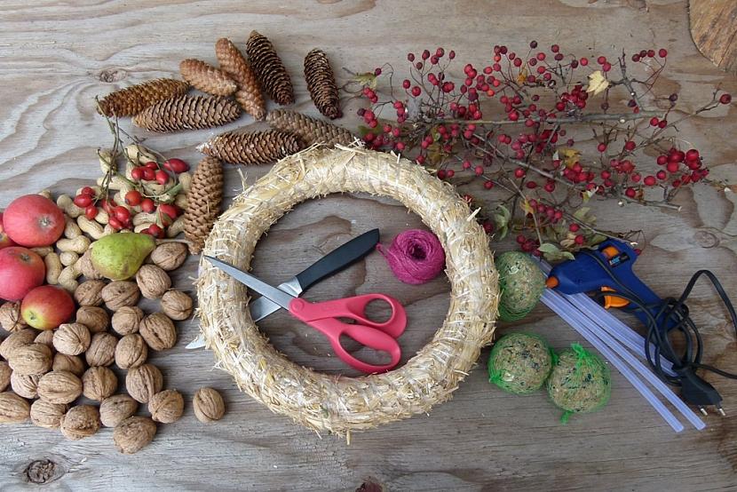 Věnec s ořechy jako krmítko pro ptáky: co budete potřebovat