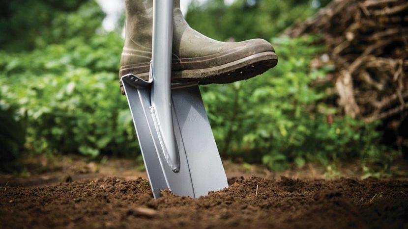 Jak sázet ovocné stromy: připravte dostatečně velkou jámu