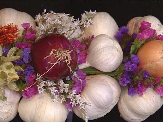 Netradiční uskladnění česneku = originální podzimní dekorace (Zdroj: Jan Kundera)
