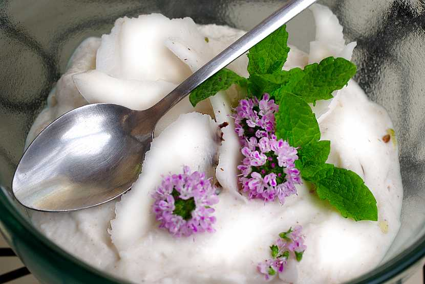 Kokosový jogurt