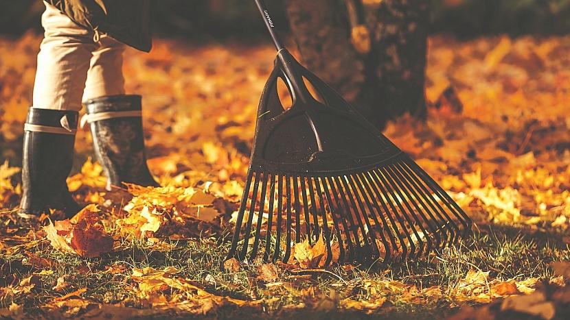 Jak připravit zahradu na zimu: extra široké hrábě pro práci na velkých plochách