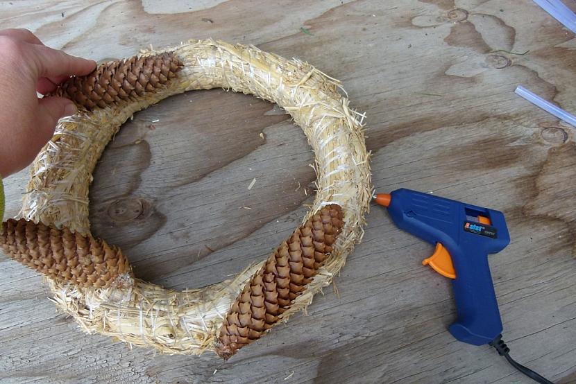 Věnec s ořechy jako krmítko pro ptáky: nalepte šišky