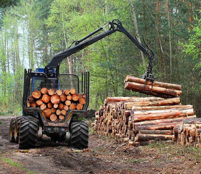 Mechanizace a těžba dřeva také k ochraně lesů patří