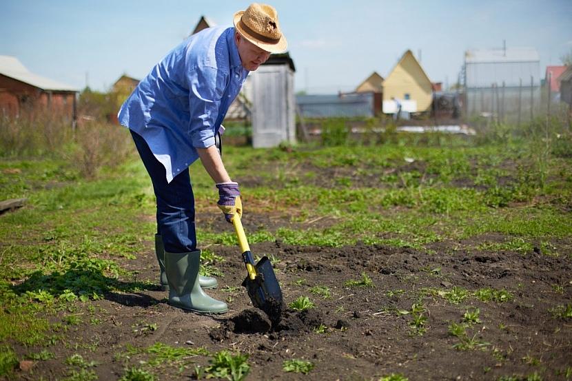 Bez pořádného rýče pole ani záhon nezkypříme