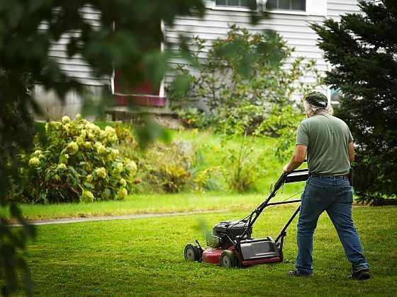 Na trávu s bubnovou nebo lištovou sekačkou? (Zdroj: Depositphotos)
