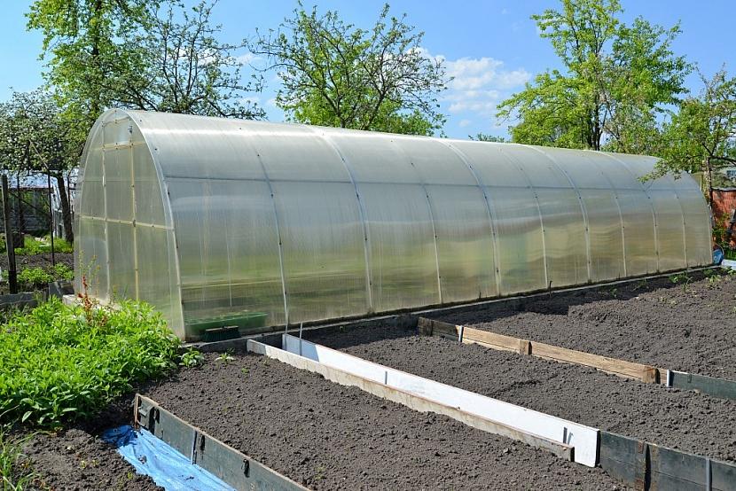 Správně umístěný skleník je jednou ze záruk velké úrody