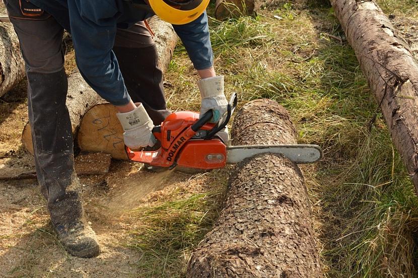 Pro řezání většího množství dřeva pořizujte vždy pilu minimálně střední kategorie