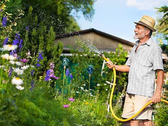 Zavlažování rostlin není žádná věda, je ale třeba k němu přistupovat rozumně a úsporně, vodou se nesmí zbytečně plýtvat (Zdroj: Depositphotos)