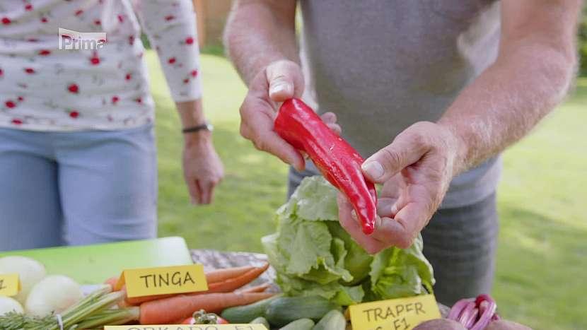 Papriky Eva jsou tradiční polní odrůdou