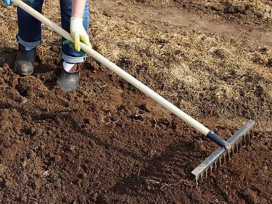 Kypření půdy pomocí hrábí je vynikající příležitost pro zapravení živin (Zdroj: Depositphotos)
