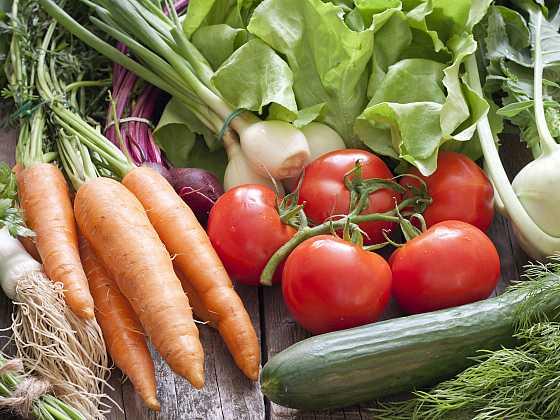 Zdravá a chutná úroda pochází z ekologického pěstování plodin (Zdroj: Depositphotos)