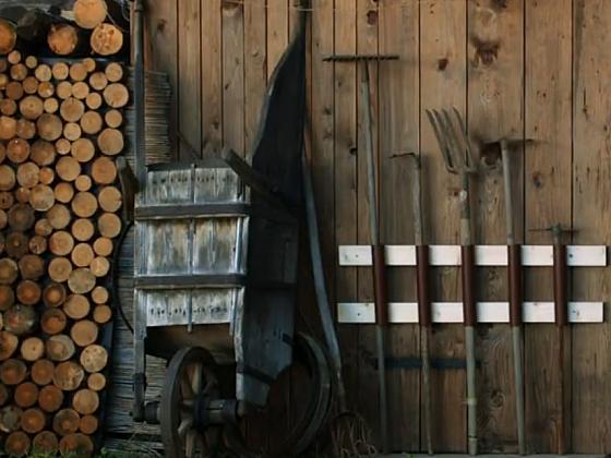 Vyrobte si s Láďou praktický držák na nářadí (Zdroj: Prima DOMA)