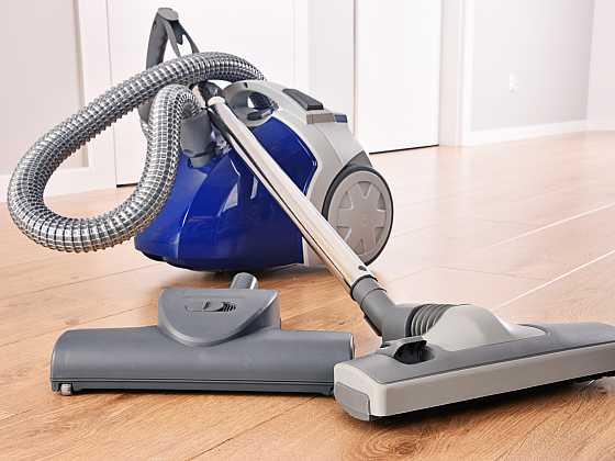 O chlup lepší vysavače. dTest prověřil, které modely udrží pořádek v domácnosti s mazlíčky (Zdroj: Depositphotos)