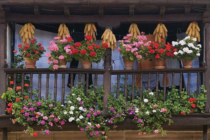 Samozávlažné květináče