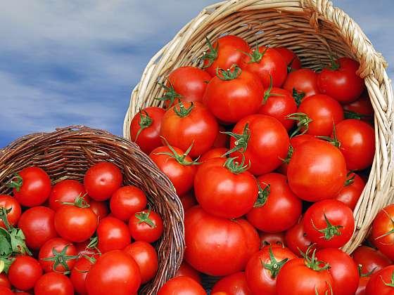 Vypěstujte si krásná zdravá rajčata (Zdroj: Depositphotos (https://cz.depositphotos.com))