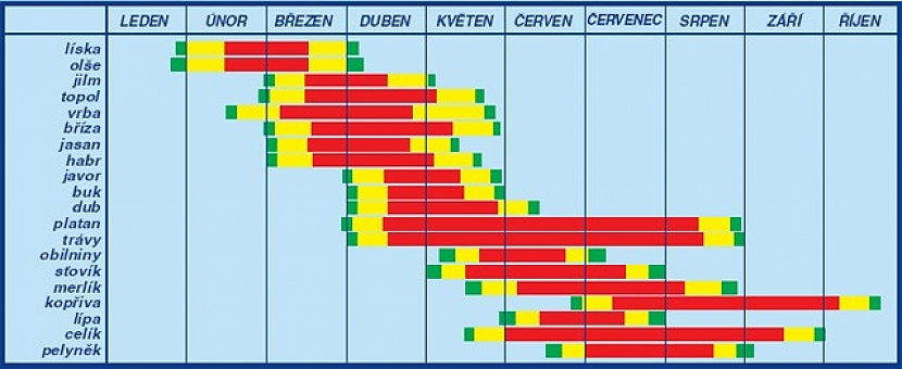 Pylový kalendář nejběžnějších druhů pylů